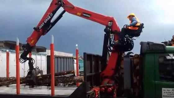 mountingondemountablecontainer-timberloader-marchesigrusrl